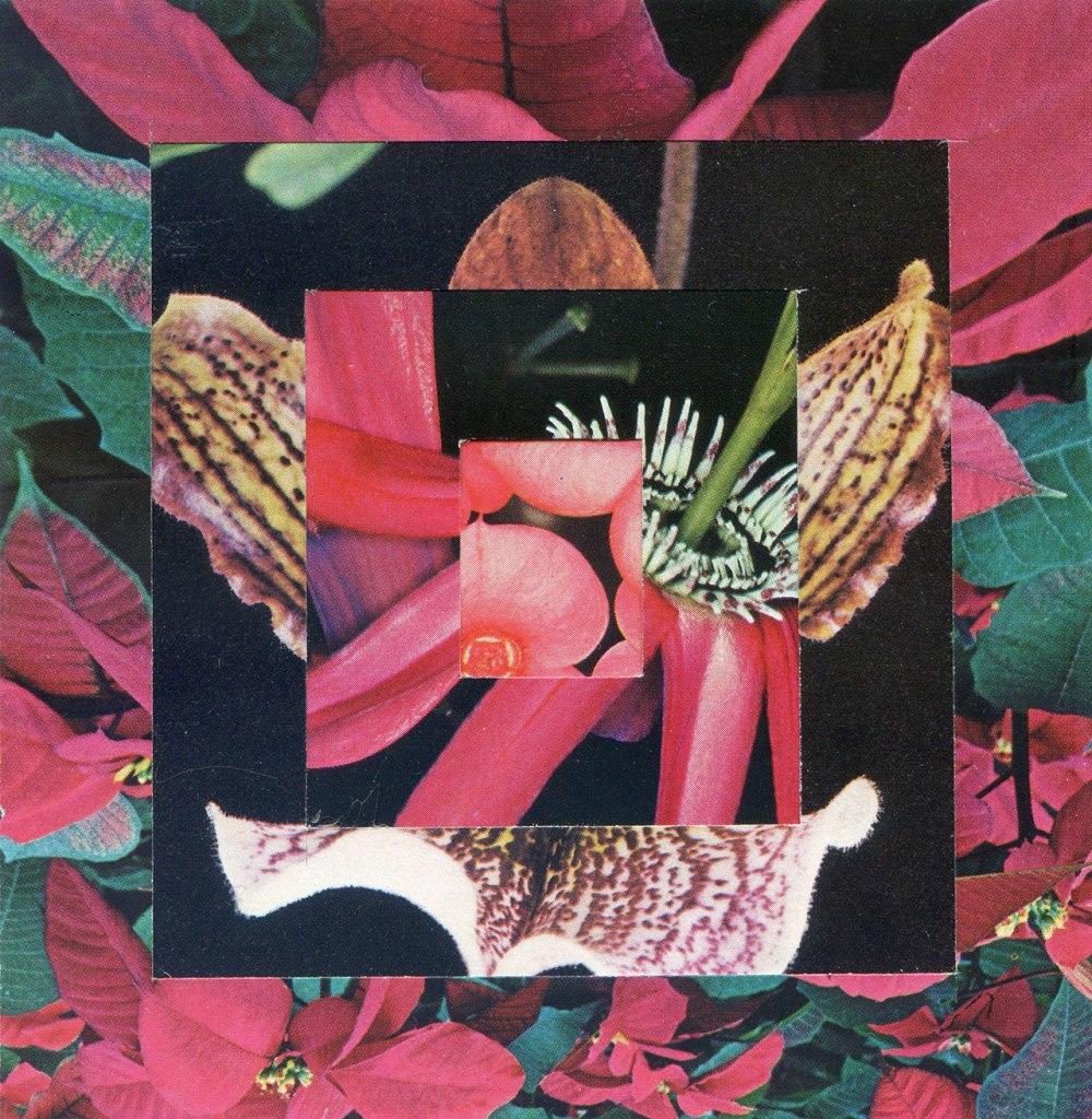 f17_luis_dourado_the_garden_secondmemory_yatzer